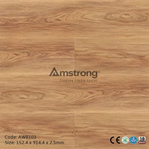 Amstrong AW8103