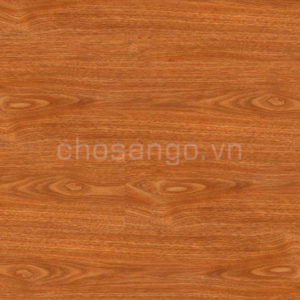Sàn nhựa giả gỗ Railflex RF306 dán keo