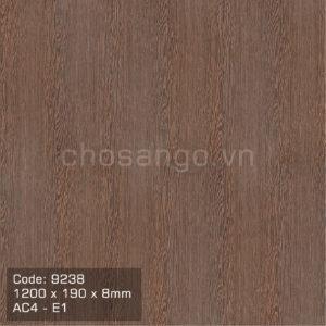 Sàn gỗ chịu nước An Cường 9238