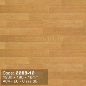 Sàn gỗ Dongwha 2209-12 dày 12mm chính hãng