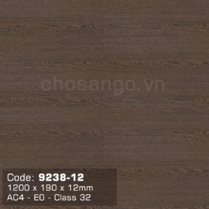 Sàn gỗ Dongwha 9238-12 dày 12mm nhập khẩu